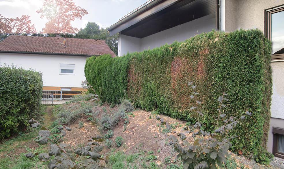 neugestaltung terrassenzugang - Bader Beispiele